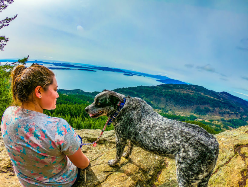 tnaa travel nurse and her dog adventure across the country