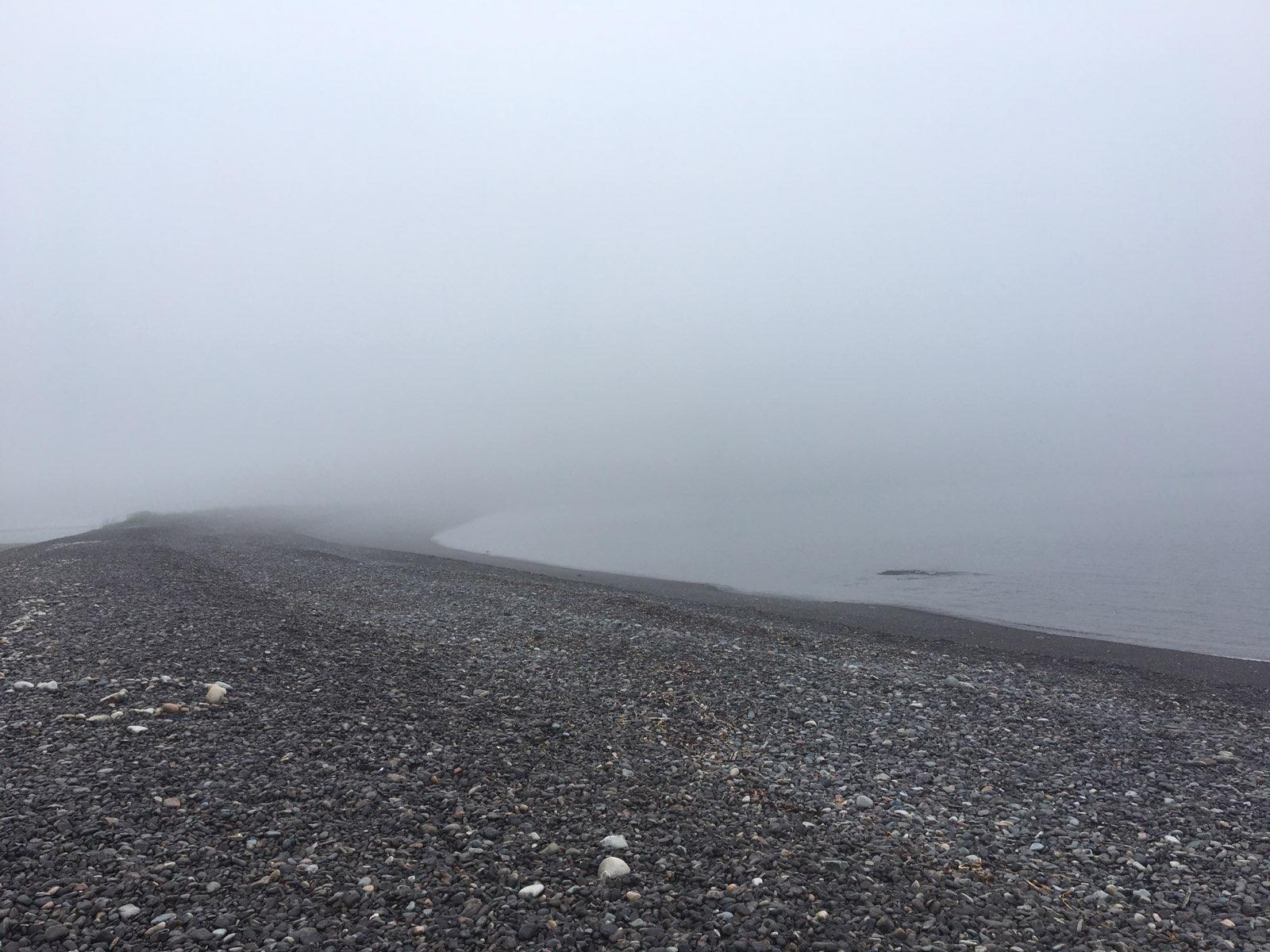 travel nurse photo of maine fog